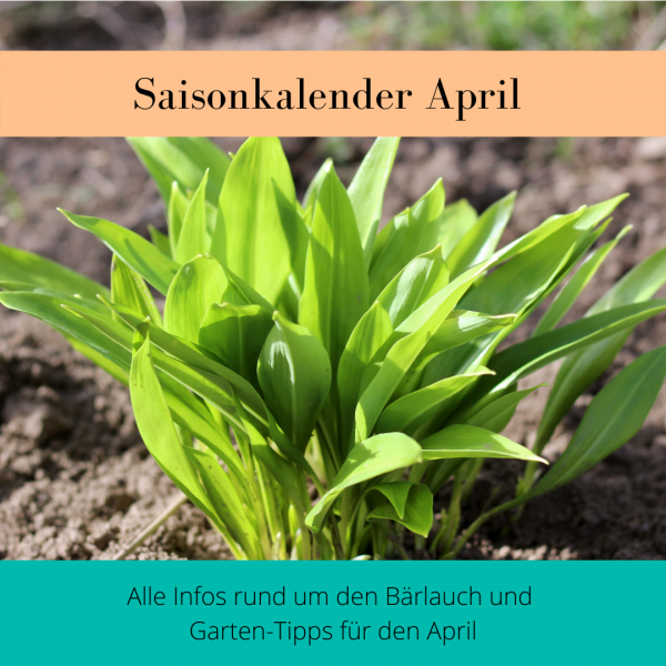 Saisonkalender-April